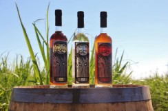 Louisiana's growing craft rum distilleries.